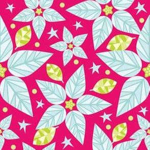 White Poinsettia Stars