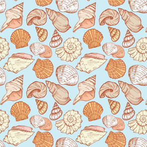 seashell color