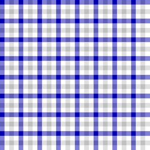 cobalt and silver double gingham