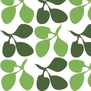 Clover_rainforest greens