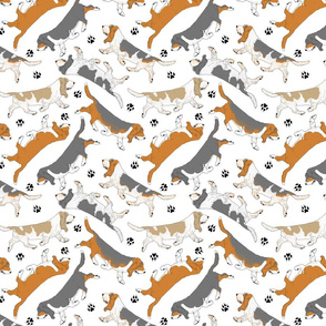 Trotting Basset hounds and paw prints - white