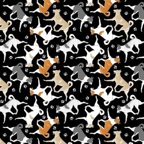 Trotting Canaan dogs and paw prints - black