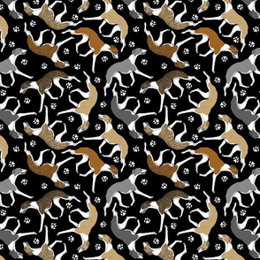 Trotting Whippets and paw prints D - black