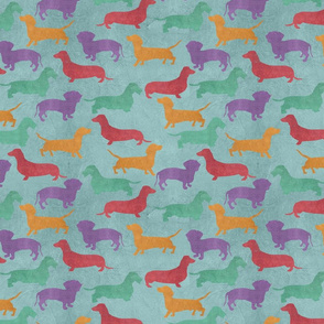 Dachshund Colorful Pattern