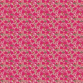 Poinsettia_flower_fond_rouge_S