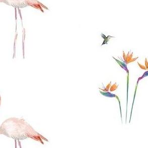 Flamingo & bird