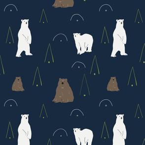 Bears meeting