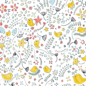 Birds meeting 1