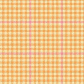 tartan check - tangerine and pink