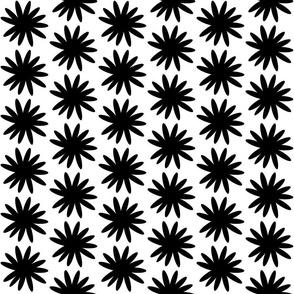Mod Floral -onyx snow MED