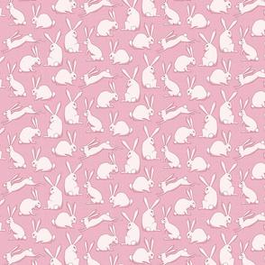 Fluffle of bunnies