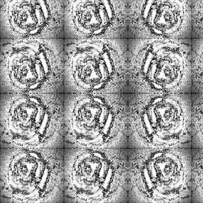 Muted_roses_in_black_and_white