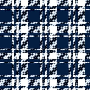 navy and white plaid