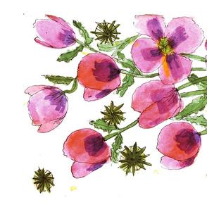 Pink & Lavender Poppies 1