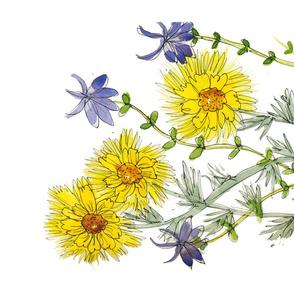 Wild Yellow Gallardia & Columbine
