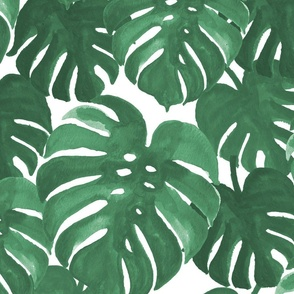 monstera cheese plant painted tropical palms botanical tropical palm springs trendy plants cactus succulents plants - EXTRA LARGE PRINT