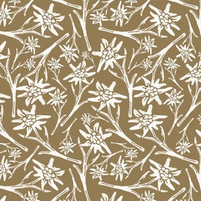 Edelweiss Lace Nr. 2 Orange Big