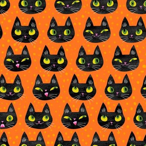 Halloween black cat faces