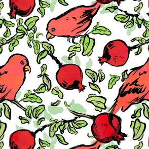 Pauline the Parrot
