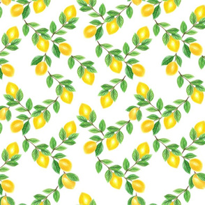 Lemon, lime, citrus
