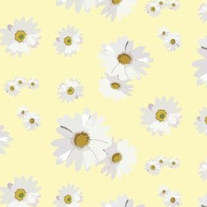 16-12A Yellow Daisy Floral_Miss Chiff Designs