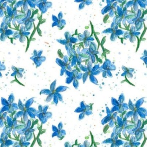 Forget Me Not Blue