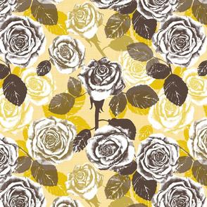 Alayna's Autumn roses