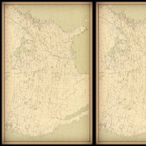 Vintage USA map, neutral colors, small