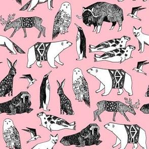 arctic animals // antarctic winter animals pink polar bear