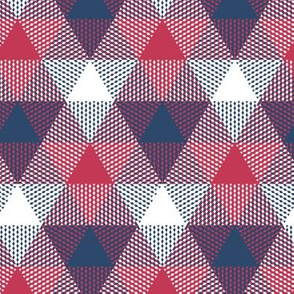 triangle gingham - red, white and blue