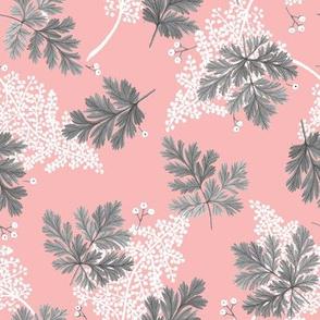 Bleeding Heart Botanical on Pink