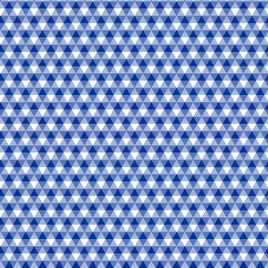 mini English blue triangle gingham