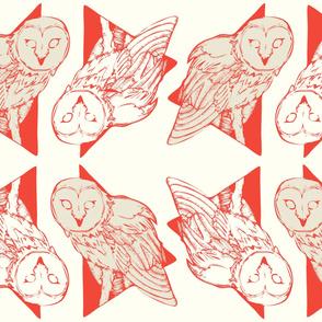 Large Owls: Poppy