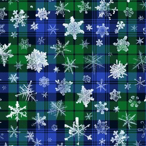 large snowflakes on the Campbell tartan