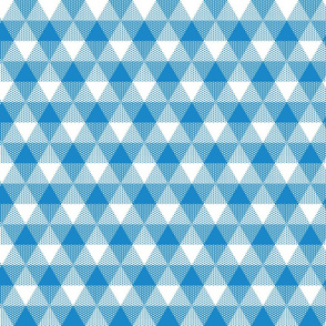 butterfly blue triangle gingham