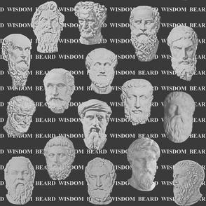WISDOM_BEARD_WISDOM_-_dark_grey