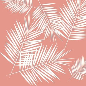 Palm leaf - white on coral Palm leaves Palm tree tropical summer || by sunny afternoon