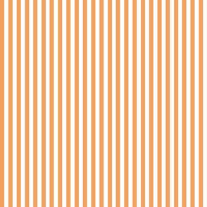 Coral_Stripe
