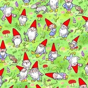Spring Gnomes