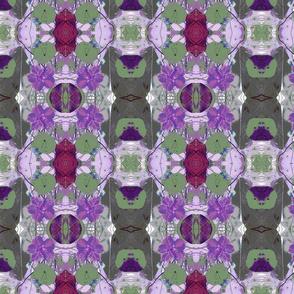 Nasturtiums Collage