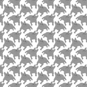 Tinted French Bulldog sketch - small white