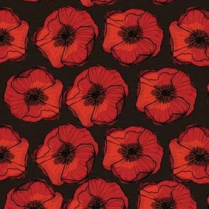 poppies poppy on black