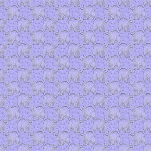 Small Posing American Eskimo dog - purple