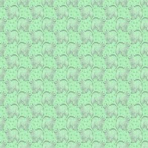 Small Posing American Eskimo dog - green