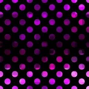 Purple Polka Dot on Black