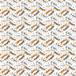 Tiny Trotting Basset hounds and paw prints - white