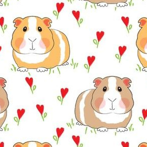large guinea pigs with red heart flowers