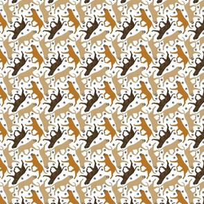 Trotting Bullmastiffs and paw prints - tiny white