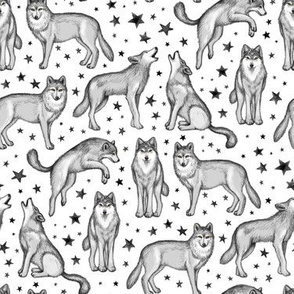 Wolves and Stars on Snowy White