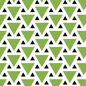 06019889 : triangle 2to1 : green